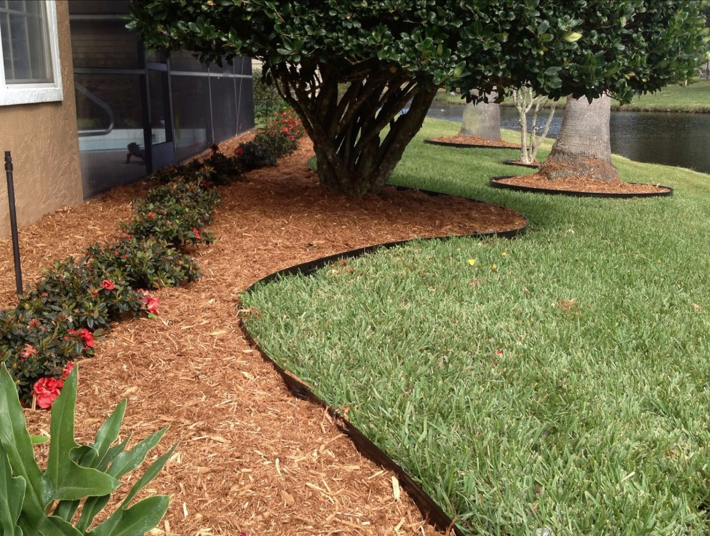 garden bed wood chips